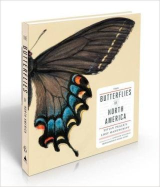 butterflies-of-north-america