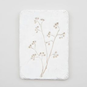 https://shop.magnolia.com/collections/new-products/products/pressed-flower-plaque?utm_medium=Social&utm_source=Pinterest